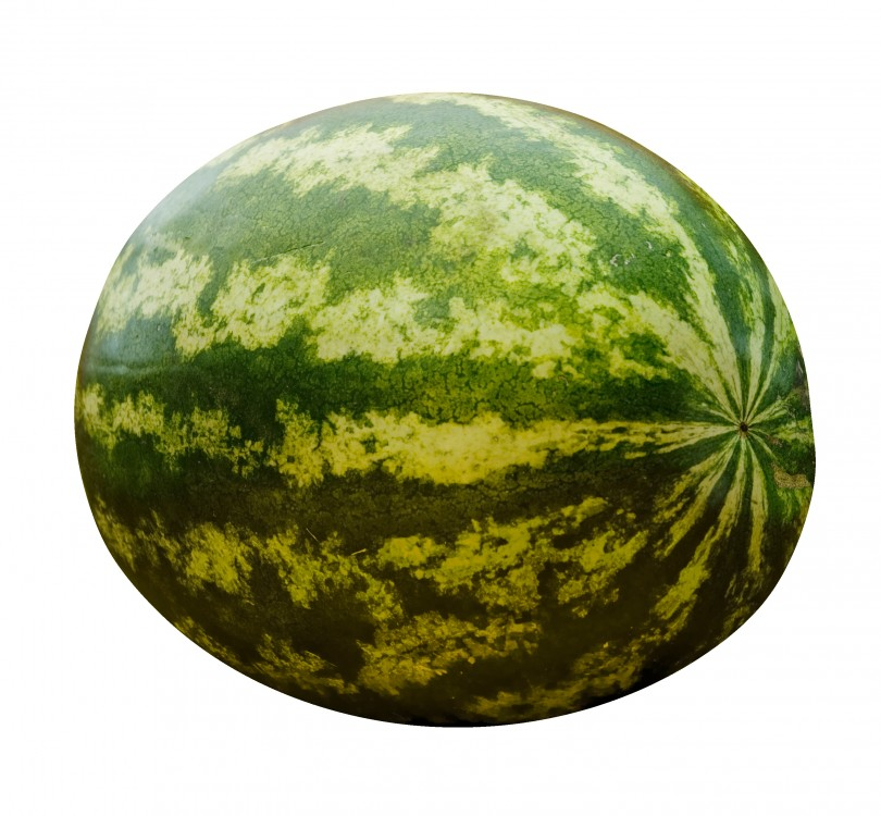stockvault-watermelon108553